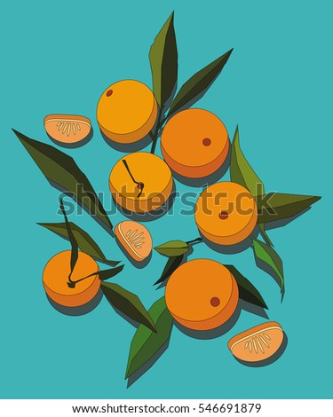 The Flat Design of Clementines Fruits.
