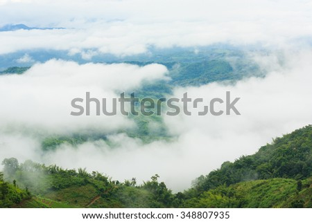 The fog and mountain in Doi Chang, Chiang Rai, Thailand. - stock photo