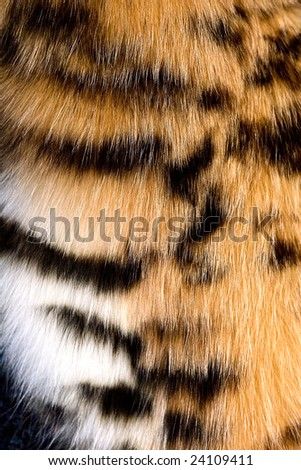 The fragment of leopard fur coat - stock photo