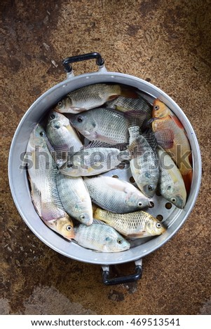 The fresh fishs for cooking dinner at my home.