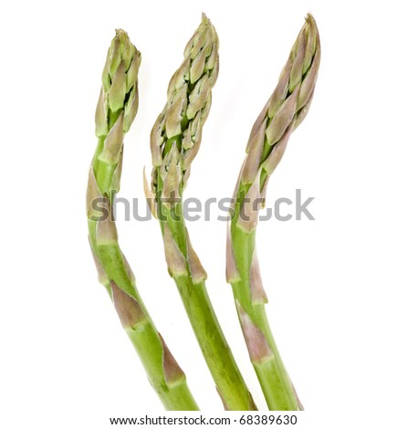 the fresh green asparagus on white background