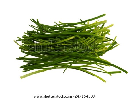 The fresh green blades of a chives plant over white - stock photo