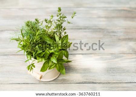 The Fresh herbs - stock photo