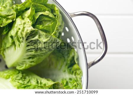 the fresh lettuce in colander - stock photo