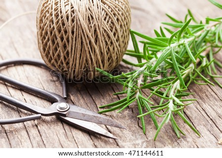 The fresh rosemary twigs on the wooden table