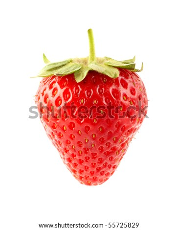 The fresh strawberrie on a clear white background - stock photo