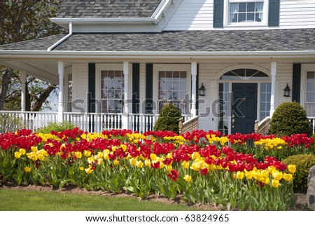 The front of a house with large flower beds full of tulips. - stock photo