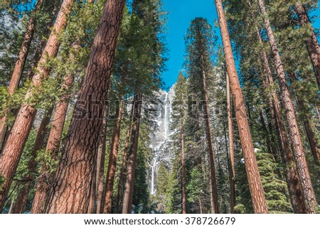 The frozen Yosemite falls in winter time surrounded by trees at Yosemite National Park, California, USA - stock photo