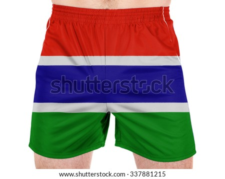 The Gambia Flag  - stock photo