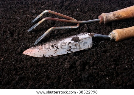 The garden tool for work in a garden on a ground.