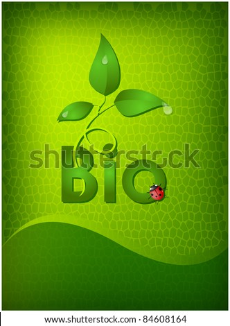 The germ of a green plant with drops of dew and the ladybug is located on an abstract mosaic background
