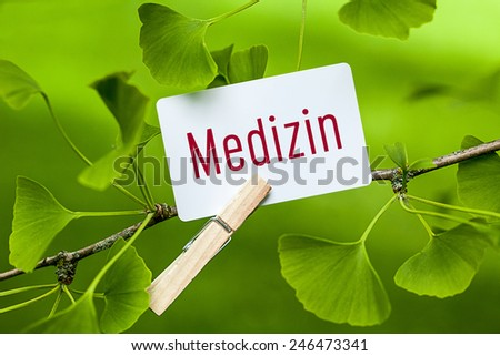 The German Word: Medizin, translation: medicine in a Ginkgo Tree - stock photo
