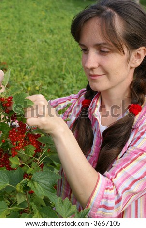 The girl collects a red currant