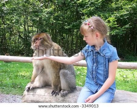 The girl feeds the monkey. The monkey looks aside. - stock photo