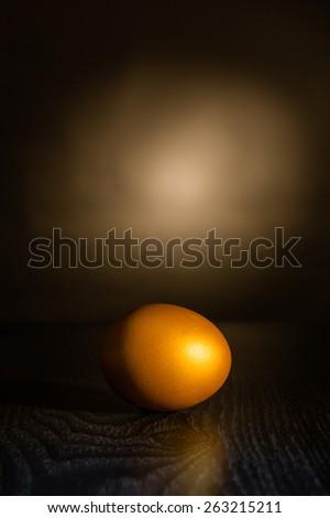 the golden egg - stock photo