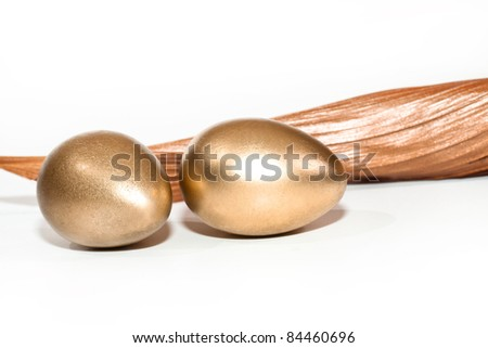 the golden egg is the profit, success in business