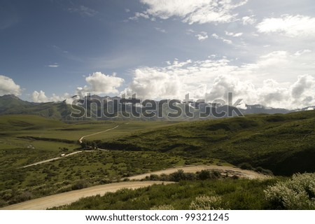 the grassland under the Blue sky with white cloud