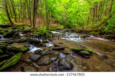 The great smokey mountains national park, stream with lush greens and waterfall - stock photo