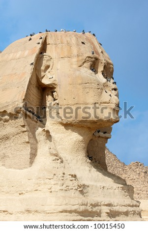 The great sphinx near of Cairo, Egypt