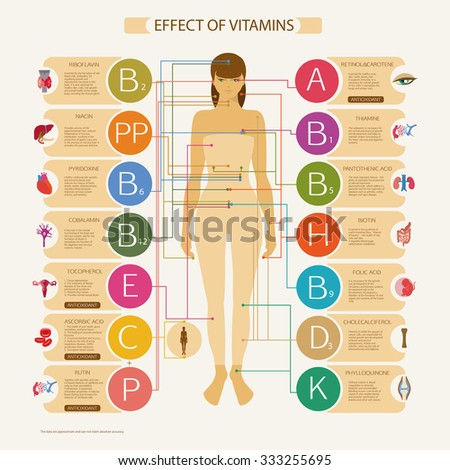 The greatest influence on the organs and systems of the human body. Visual scheme with the scientific name and a brief description of the action of essential vitamins necessary for human health. - stock photo