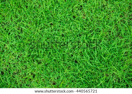 The Green artificial grass in the stadium, a large ball