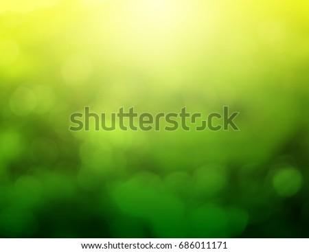 The green bokeh background reflects the morning sun.