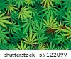 The green hemp, cannabis leaf background texture - stock vector
