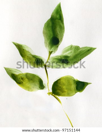 The green leaves. Watercolor. - stock photo