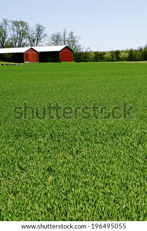 The green pasture near a couple of barns. - stock photo