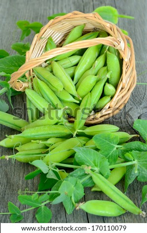 The green peas on wooden table - stock photo