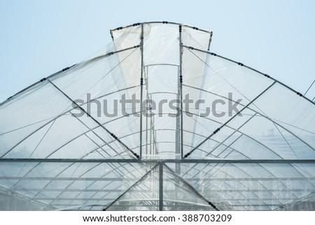 The greenhouse  - stock photo