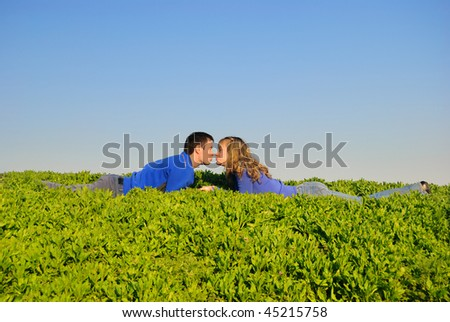 The guy and the girl lay in a grass and kisses - stock photo