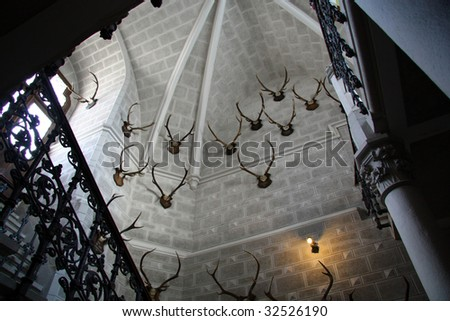 The hall with the hunting trophies