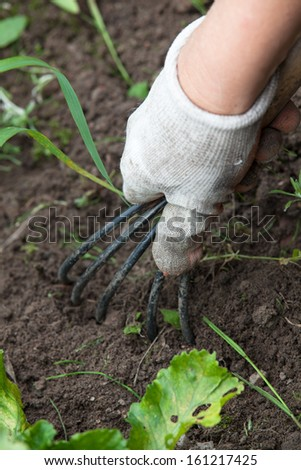 The hand holding the gardening tool - stock photo