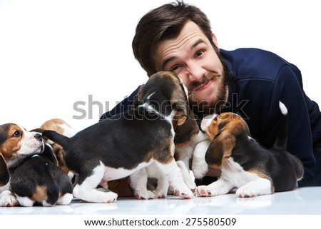 The happy man and big group of a beagle puppies on white background