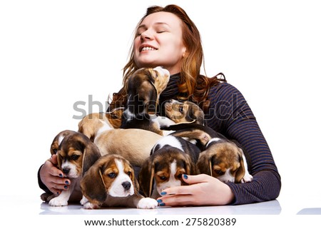 The happy  woman and big group of a beagle puppies on white background - stock photo