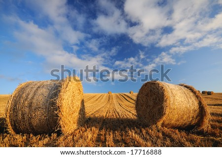 The haycircles,Ireland - stock photo