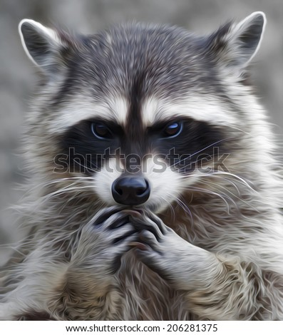 The head and hands of cute and cuddly raccoon. Side face portrait of the excellent representative of the wildlife. Human like expression on the animal face. Great for user pic, icon, label or tattoo. - stock photo