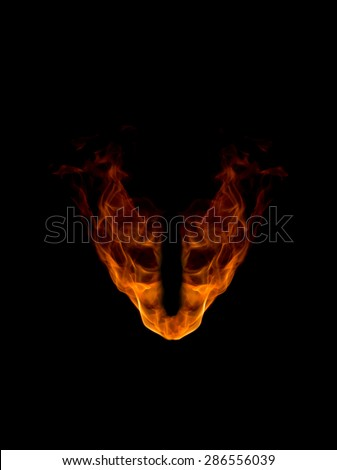 The head of fire demon - stock photo