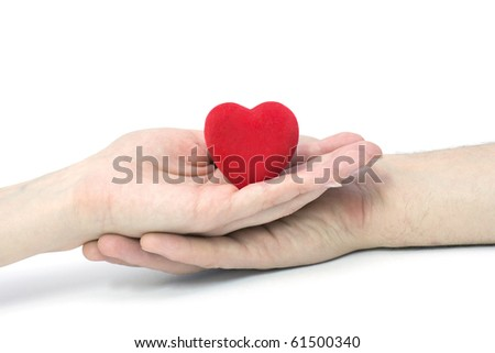 The Heart in hands.