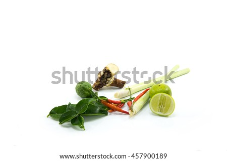 the herb and spice ingredients isolated on white background - stock photo