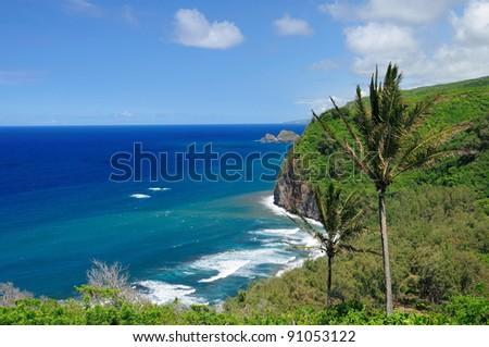 The Hokala coast on the Big Island of Hawaii - stock photo