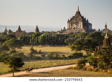 The Horse car in the plain of Bagan(Pagan) at sunset, Bagan, Myanmar - stock photo