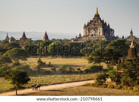 The Horse car in the plain of Bagan(Pagan) at sunset, Bagan, Myanmar - stock photo