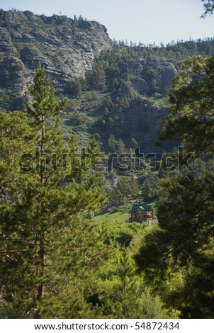 The house in mountains among pines - stock photo