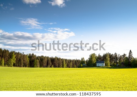 The house on a green field in a sunny day - stock photo