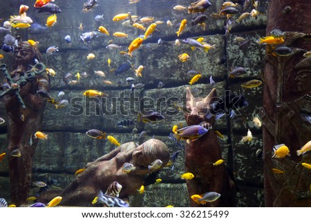 The huge aquarium in the Egyptian style - stock photo
