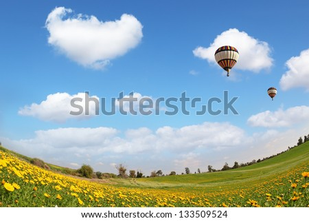 The  huge field with blooming buttercups and flying in the sky, beautiful multicolored balloon. The wonderful spring day