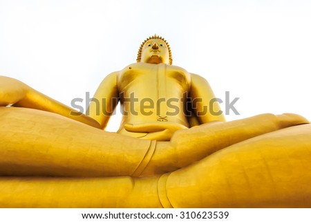 the huge golden buddha statues for the worship life the indigenous peoples of asia