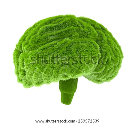The human brain is covered with green grass. The metaphor of the wild, natural or imperfect intelligence - stock photo